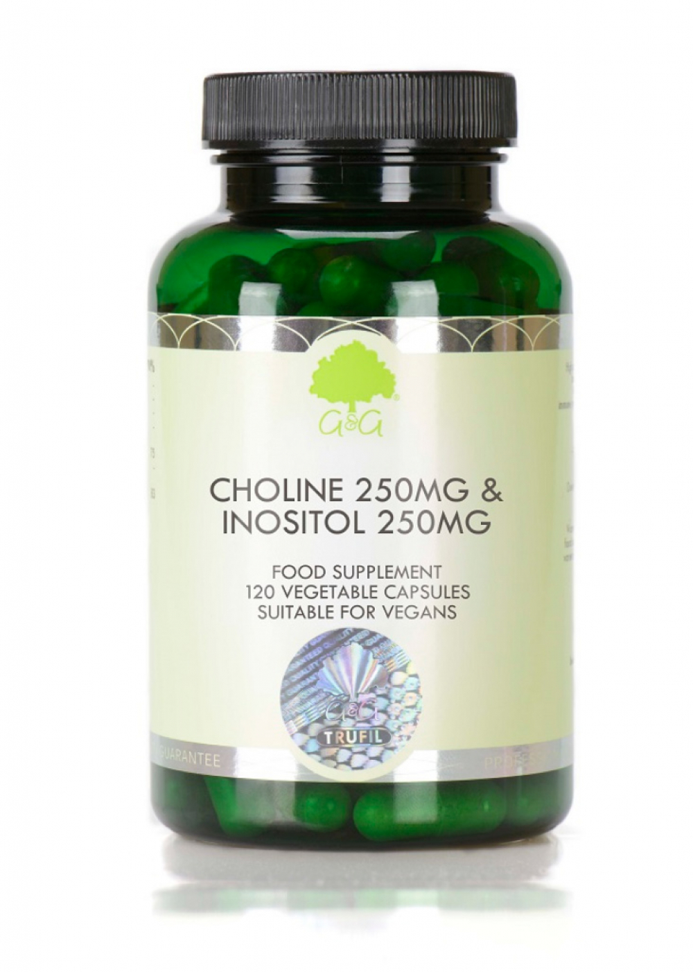 G&G Vitamins Choline 250mg & Inositol 250mg 120 veg. Kapseln (74,4g)
