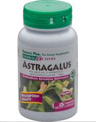 Natures Plus Herbal Actives Astragalus 450mg 60 veg. Kapseln