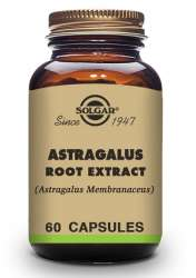 Solgar Astragalus Root Extract (Tragant) 60 veg. Kapseln (vegan)