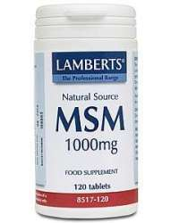 Lamberts MSM (Methylsulfonylmethan) 1000mg 120 Tabletten