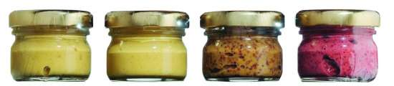 Vier Sorten Dijon-Senf 4 x 25 g Stück