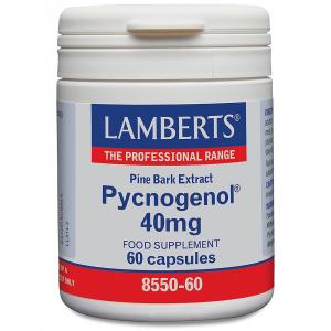 Lamberts Healthcare Ltd. Pycnogenol 40mg 60 veg. Kapseln (vegan)